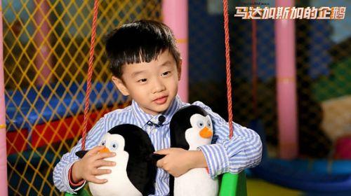除了在海洋馆实地接触企鹅生活,可爱外形与企鹅萌态如出一辙的杨阳洋