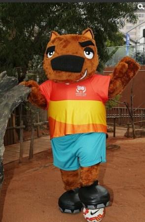物在悉尼野生动物园揭晓,一只名叫nutmeg的袋熊成为本届亚洲杯吉祥物.