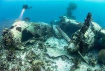 世界最大海底墓地:近300架日军舰机葬身于此
