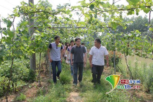 滁州乌衣镇组织大学生村官开展片区创业交流活