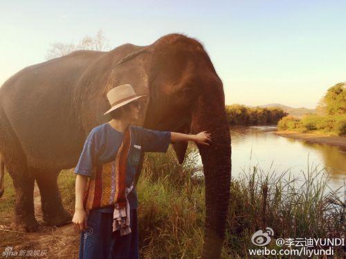 组图:李云迪金三角度假 骑大象坐船亲近自然