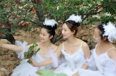 美女樱桃树下跳芭蕾_青岛美女樱桃树下跳芭蕾表演锁骨挺樱桃_新
